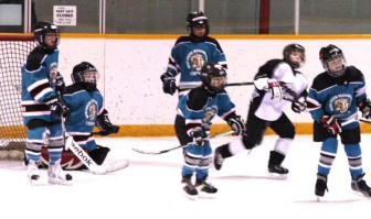 Future NHL Stars? Hockey, Hockey, Hockey!
