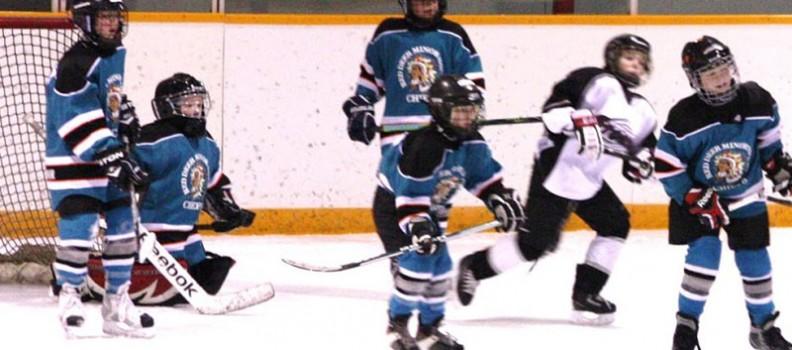 Future NHL Stars? Hockey, Hockey, Hockey!
